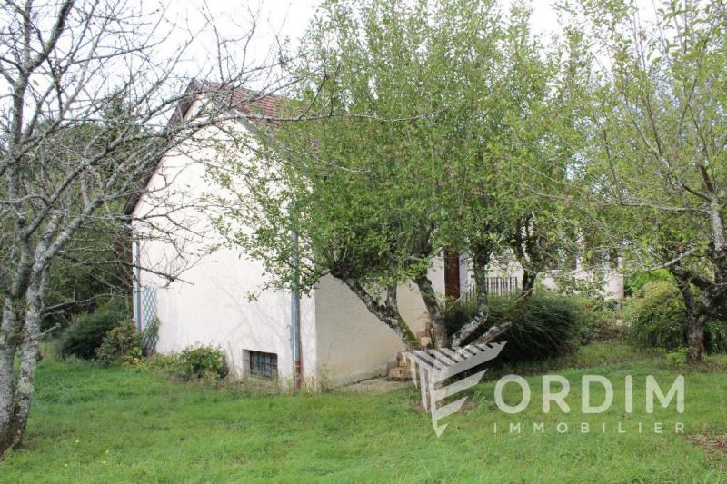 Vente maison / villa St sauveur en puisaye 89000€ - Photo 17