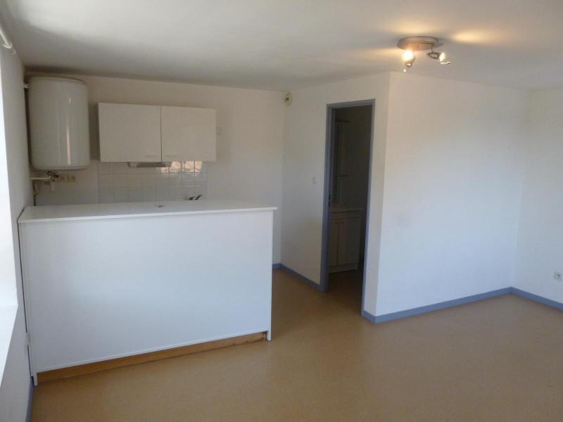Location appartement Champagne au mont d or 435€ CC - Photo 3