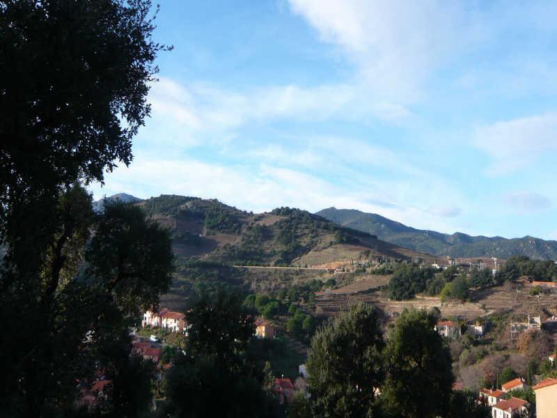 Sale site Collioure 199 000€ - Picture 3