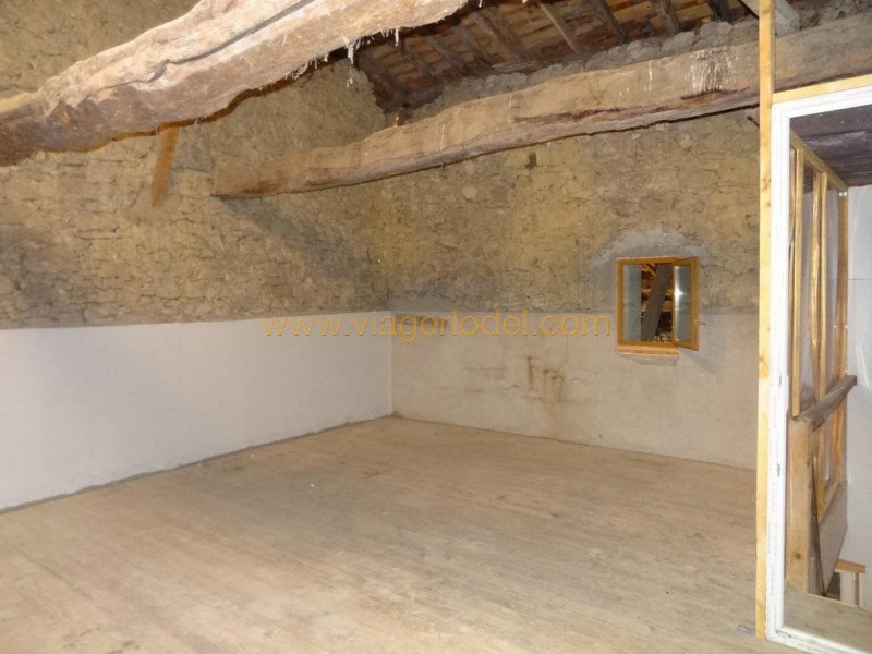 Viager maison / villa Larroque-saint-sernin 112 000€ - Photo 12