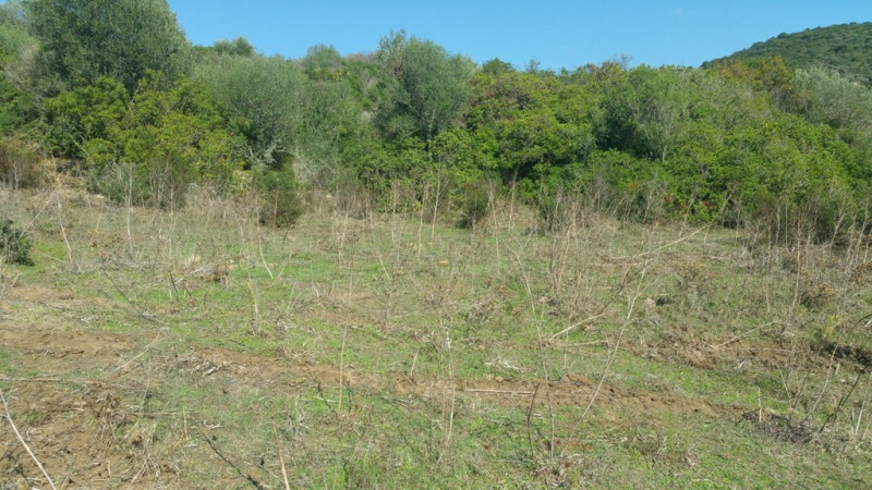 Vente terrain Pietrosella 136 250€ - Photo 6