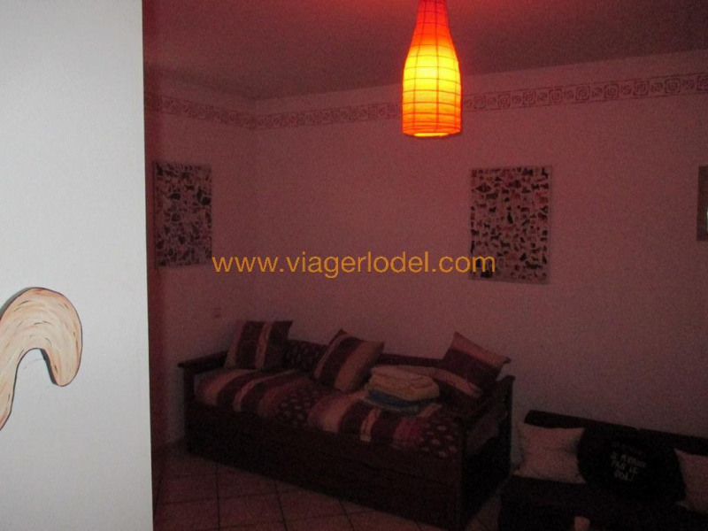 Vendita nell' vitalizio di vita casa Palau-del-vidre 171000€ - Fotografia 14