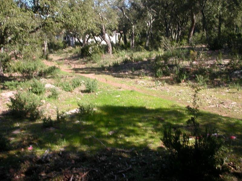 Sale house / villa Le cannet des maures 336000€ - Picture 5