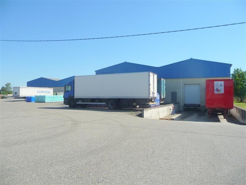 Location Local d'activités / Entrepôt Bruguières 0