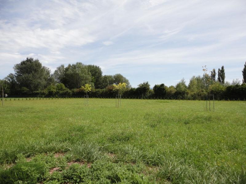 Vente terrain Althen des paluds 50000€ - Photo 1