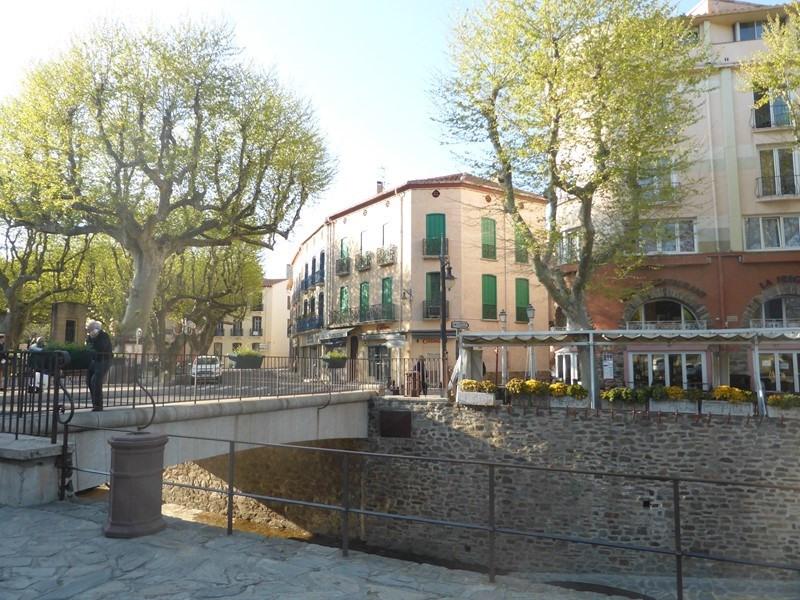 Location vacances appartement Collioure 262€ - Photo 9