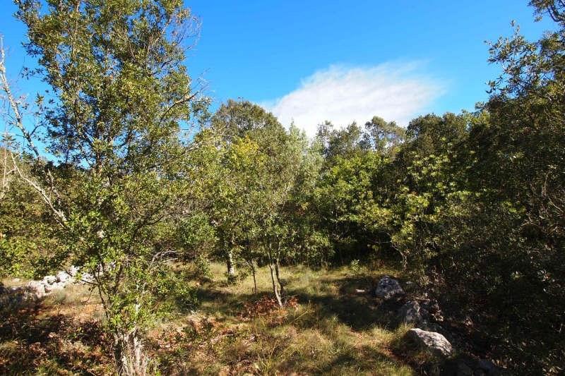 Vendita terreno Goudargues 99000€ - Fotografia 2