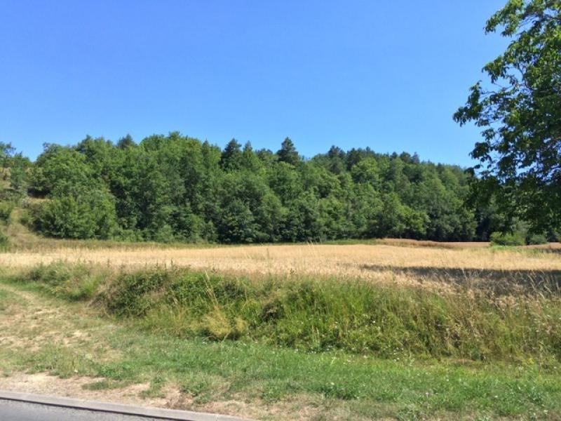 Vente terrain Saint-germain-de-belvès 97200€ - Photo 2