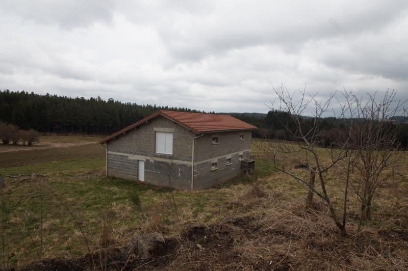 Verkoop  huis Lapte 315000€ - Foto 10