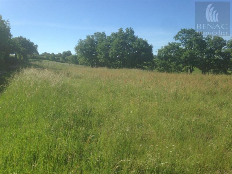 Vente terrain St antonin de lacalm 38000€ - Photo 2