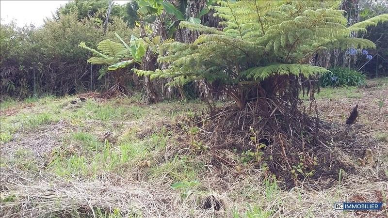 Vente terrain La plaine des palmistes 55000€ - Photo 5