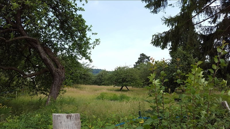 Sale site Lutzelhouse 299 000€ - Picture 1