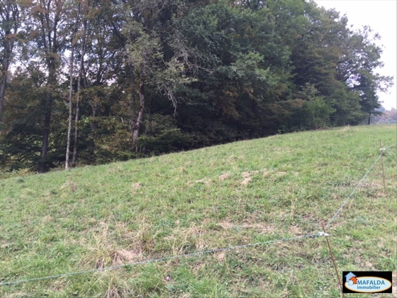 Vente terrain Sallanches 169 000€ - Photo 1