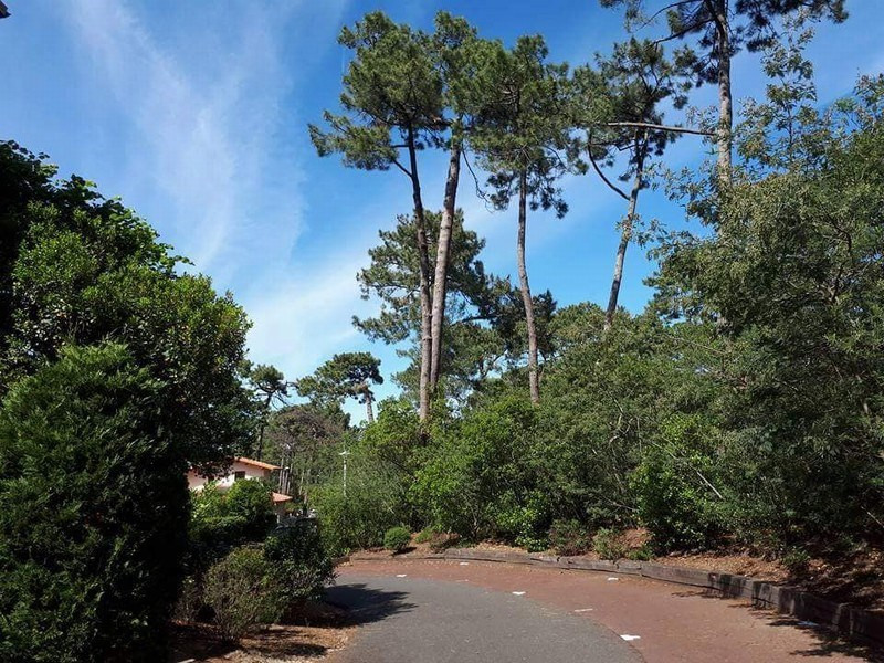 Sale apartment Arcachon 315 000€ - Picture 10