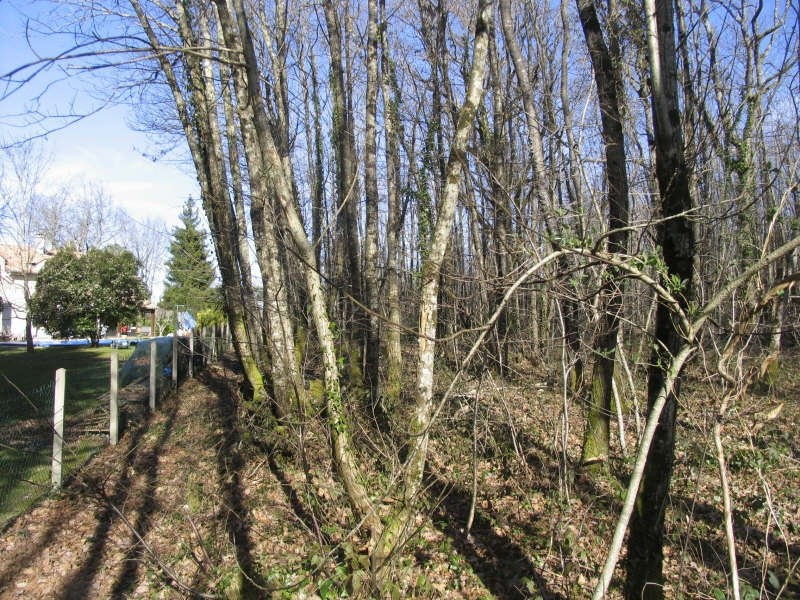 Vente terrain Chateau l eveque 49 500€ - Photo 6
