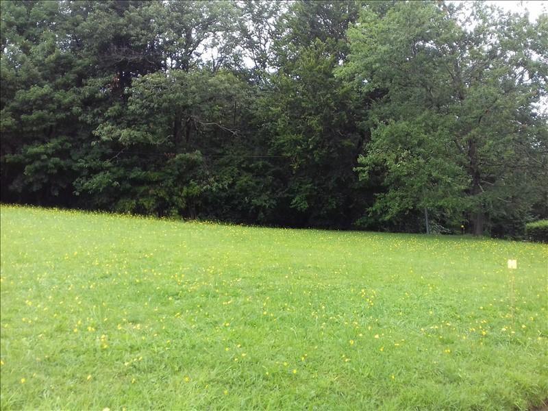 Vente terrain Gan 110000€ - Photo 3