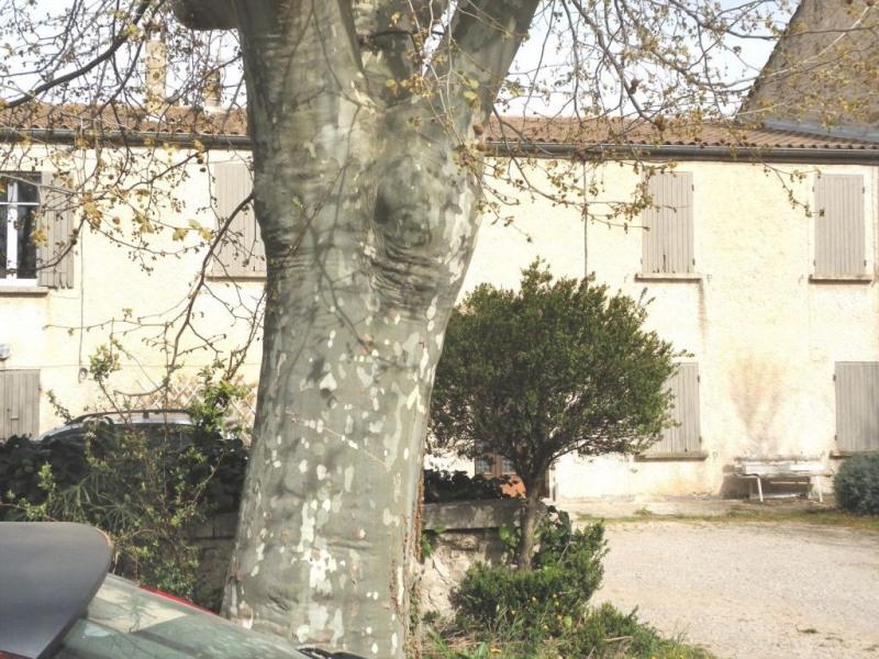 Venta  casa Montfavet 244000€ - Fotografía 6