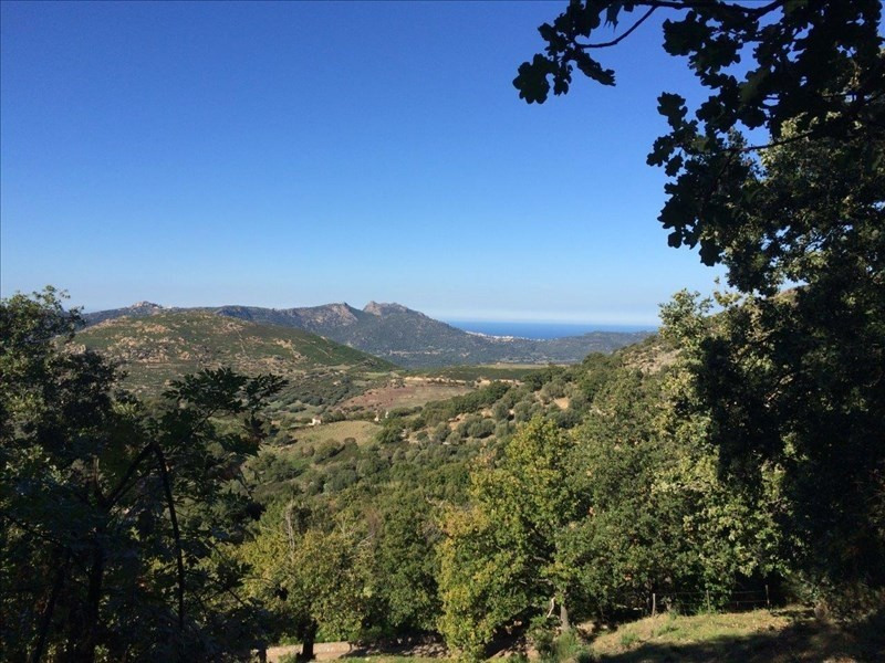 Vente terrain Nessa 75000€ - Photo 1
