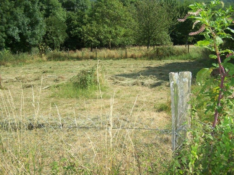 Vente terrain Secteur de st amans soult 23 000€ - Photo 2