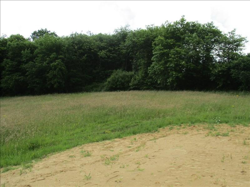 Vente terrain Varacieux 73000€ - Photo 2