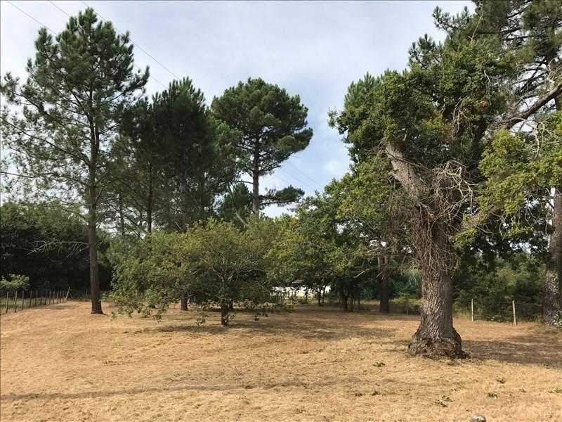 Vente terrain Mimizan 151000€ - Photo 1
