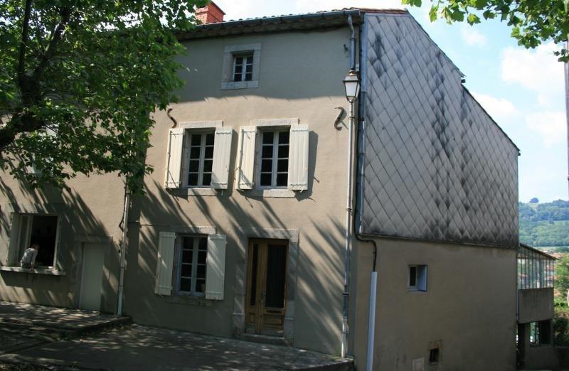 Vente maison / villa Secteur de st amans soult 60000€ - Photo 7