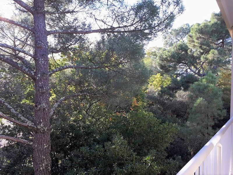 Sale apartment Arcachon 155 000€ - Picture 3