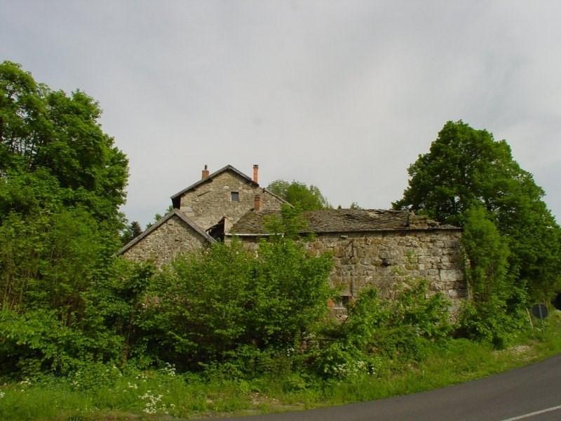 Sale house / villa St jeures 75200€ - Picture 3