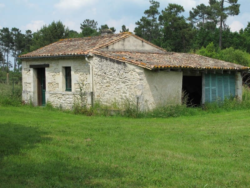 Sale house / villa St savin 220000€ - Picture 3