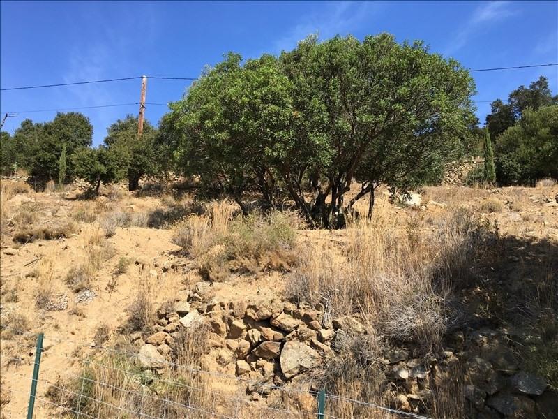 Vente terrain Monticello 265000€ - Photo 5