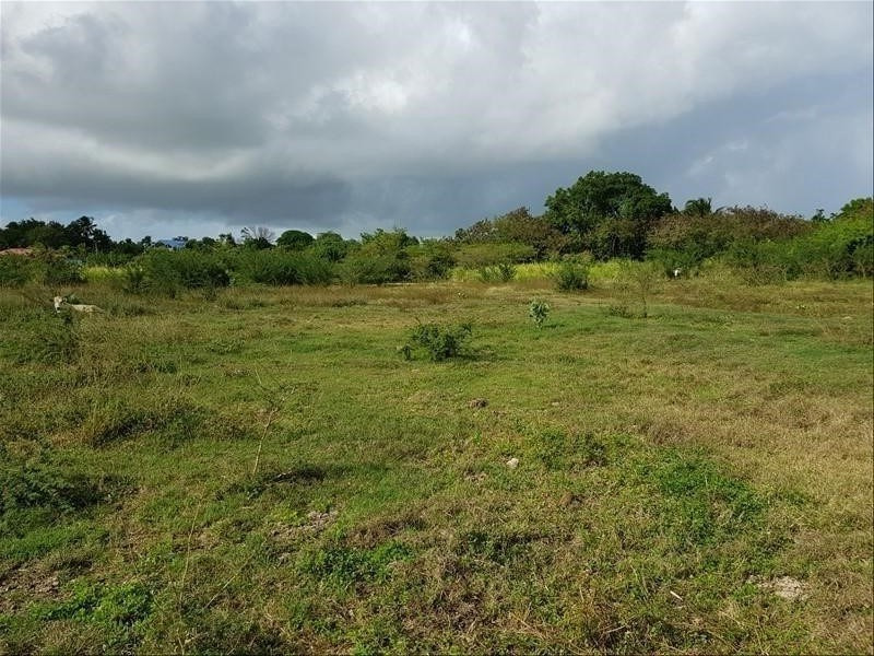 Vente terrain St francois 220 000€ - Photo 1