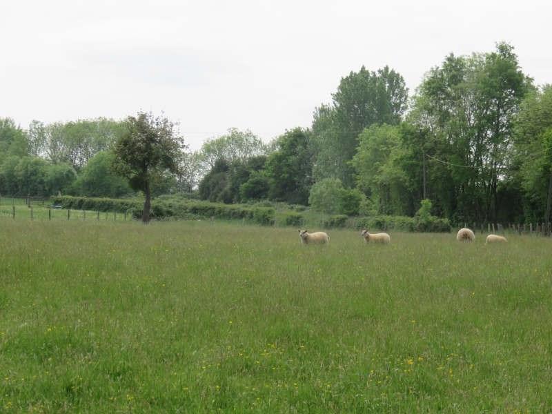 Vente terrain Alencon 34500€ - Photo 5