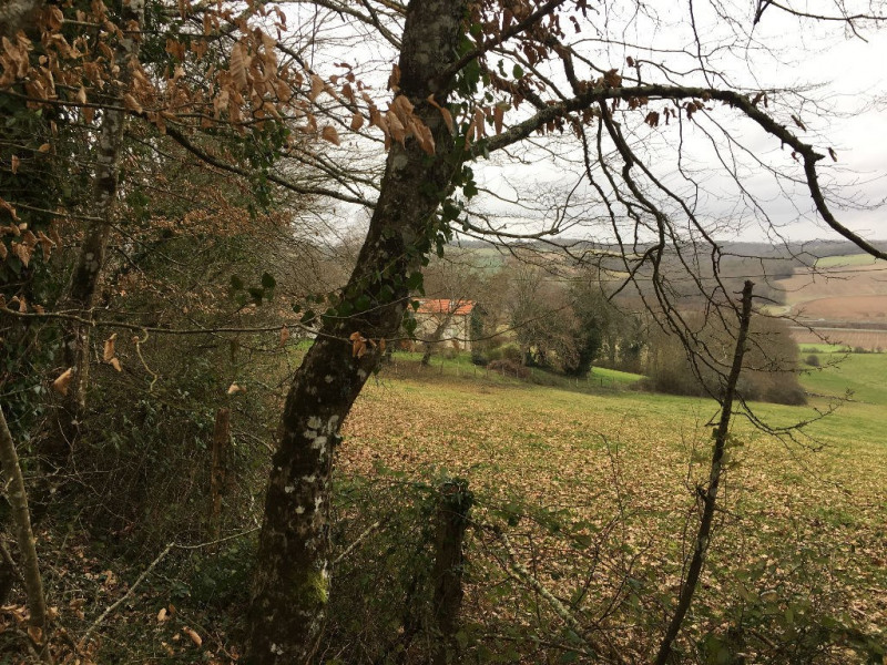 Vente terrain Coursac 30000€ - Photo 3