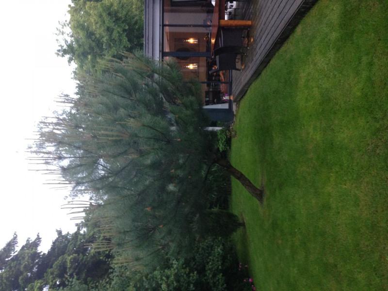 Vente maison / villa Colmar 1030000€ - Photo 4