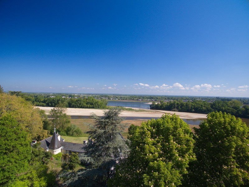 Deluxe sale chateau Angers sud loire 20 mn 1 150 000€ - Picture 6