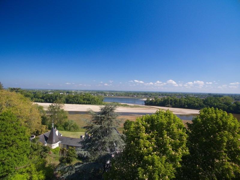 Vente de prestige château Angers sud loire 20 mn 1150000€ - Photo 5