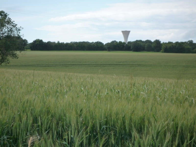 Vente terrain Rochefort 75000€ - Photo 3
