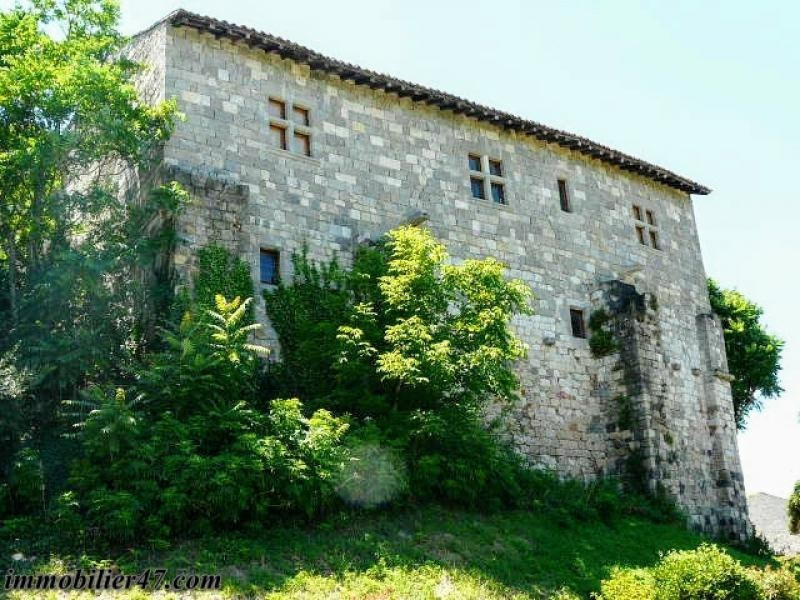 Vente de prestige château Prayssas 474000€ - Photo 11