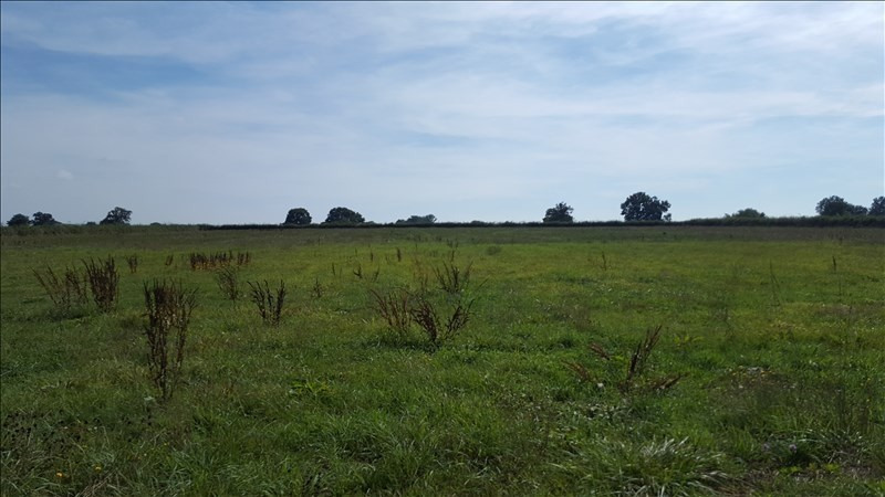 Vente terrain Cossaye 10 000€ - Photo 3