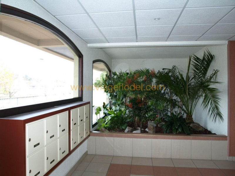 养老保险 公寓 L'horme 34500€ - 照片 6