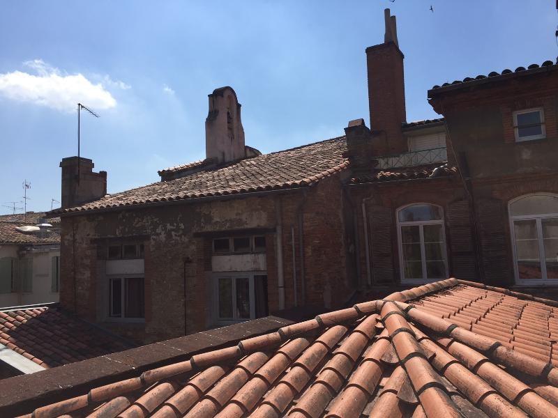 Vente de prestige maison / villa Toulouse 580000€ - Photo 8