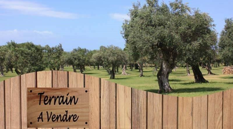 Vente terrain St georges d esperanche 165000€ - Photo 3