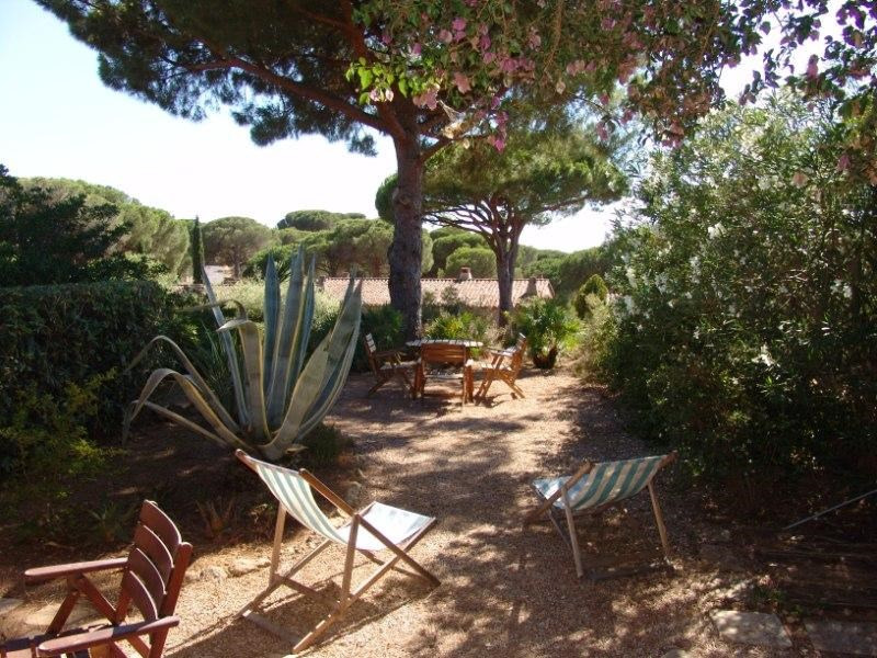 Vacation rental house / villa La croix valmer 1 600€ - Picture 1