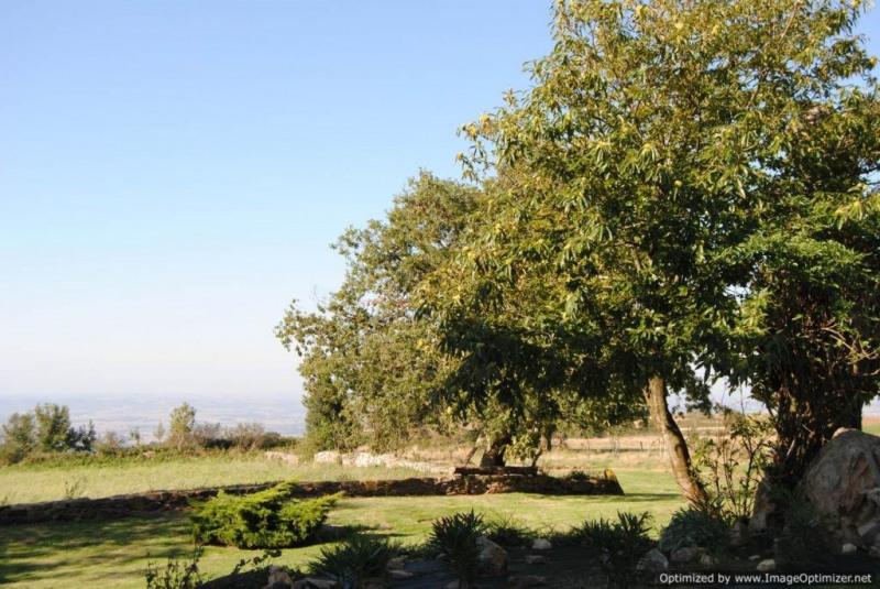 Vente maison / villa Labecede lauragais 448000€ - Photo 14