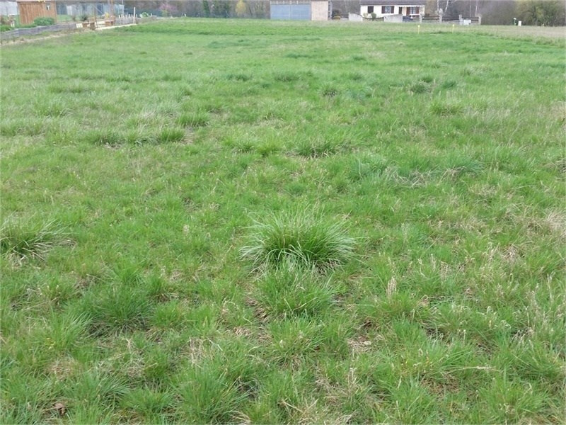 Terrain constructible Romilly-sur-Aigre