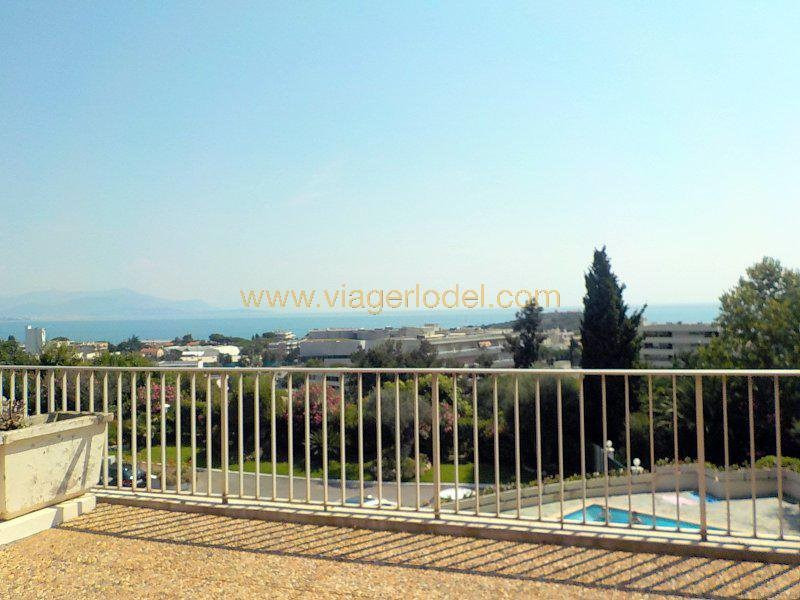 Life annuity apartment Antibes 95000€ - Picture 6