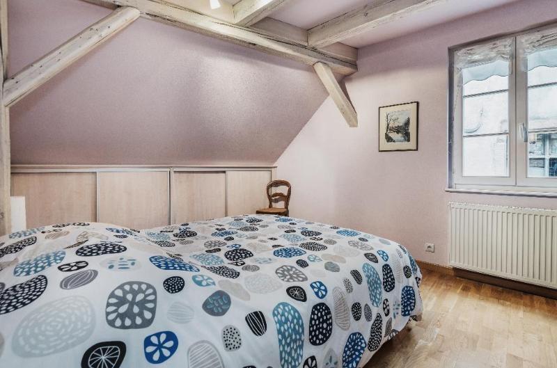 Location vacances appartement Strasbourg 1690€ - Photo 3