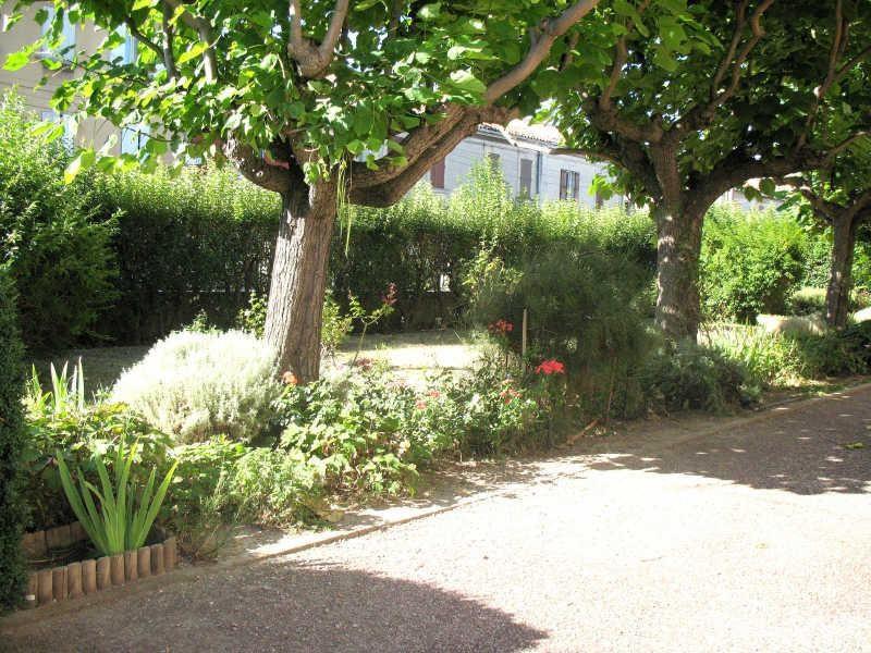 Affitto appartamento Avignon 470€ CC - Fotografia 4