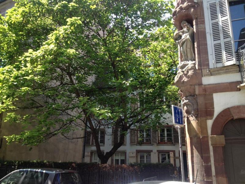 出租 公寓 Strasbourg 570€ CC - 照片 1