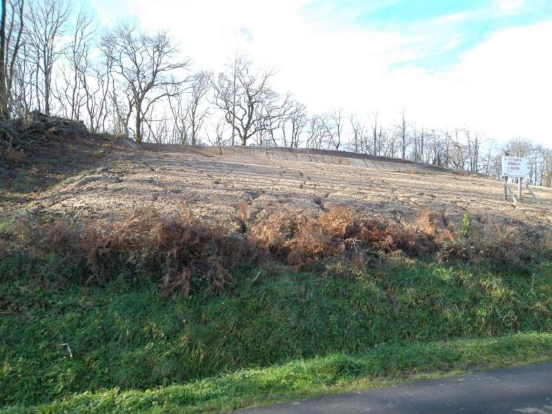 Vente terrain Salies de bearn 41000€ - Photo 3
